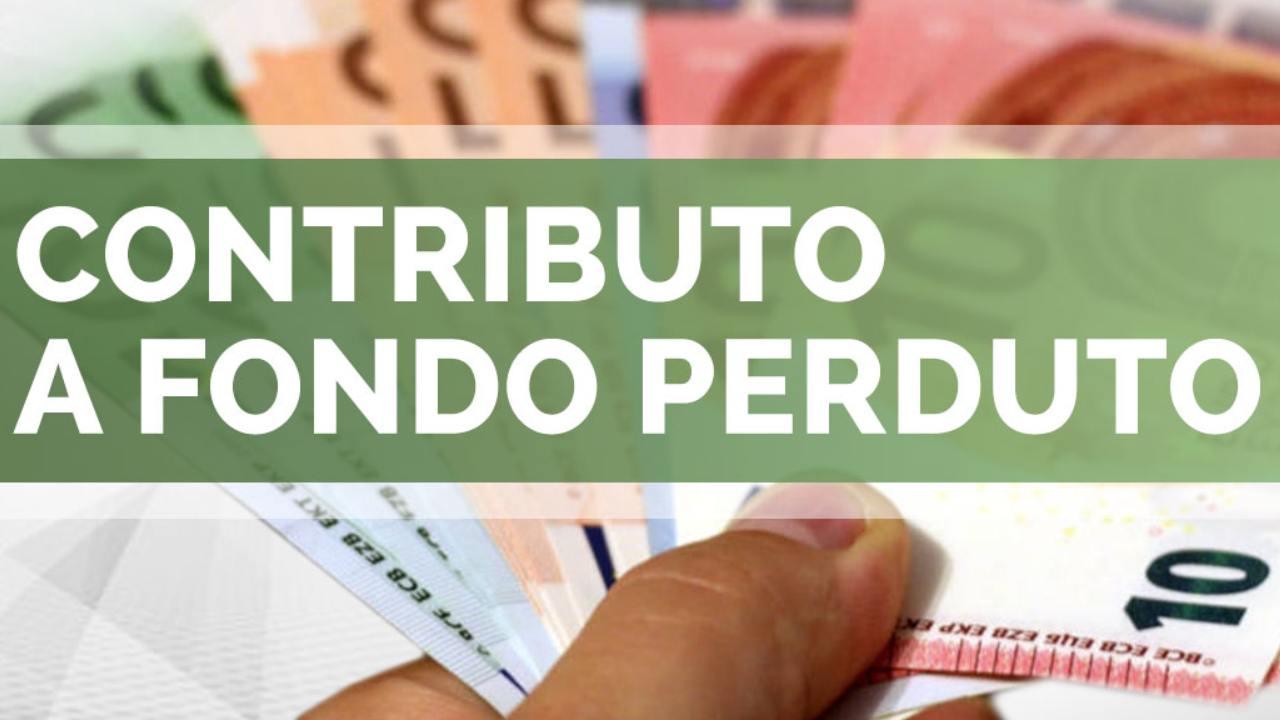 contributo a fondo perduto (web source) (1)