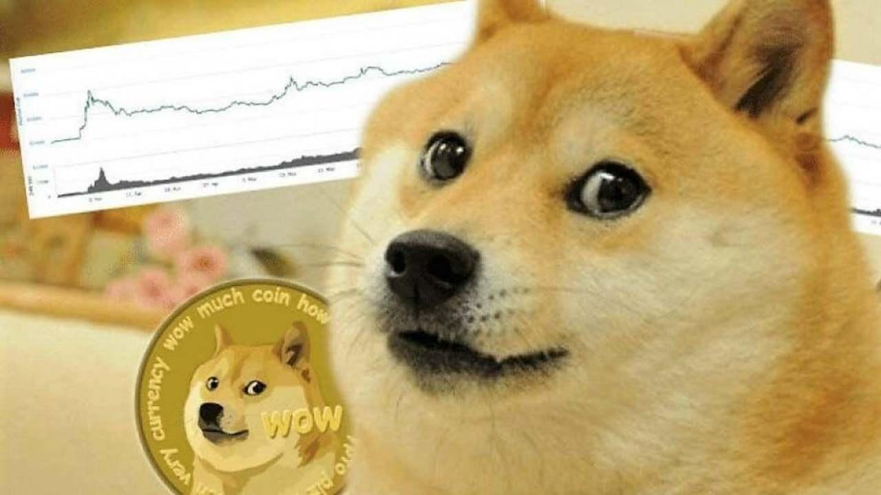 dogecoin (web source)